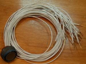 tews harness 1